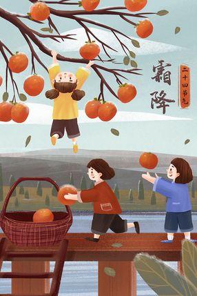 霜降节摘柿子治愈系风景