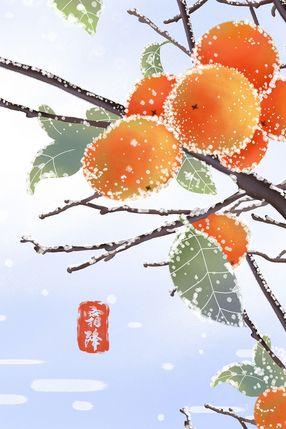 二十四节气霜降柿子