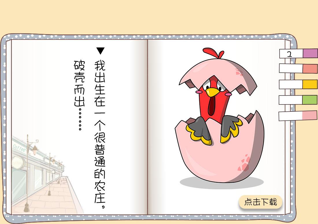 一只鸡的一生_02.jpg