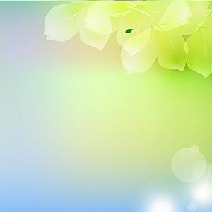 唯美花朵淘宝主图背景
