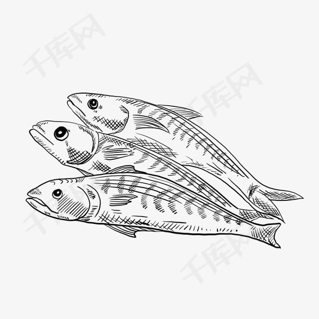 海鲜鱼手绘卡通黑白简笔画素材图片免费下载 高清psd 千库网 图片编号11786192