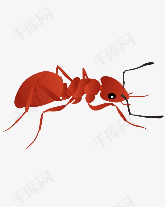 矢量手绘卡通蚂蚁的素材免抠ppt矢量图卡通元素卡通动漫蚂蚁搬家逼真蚂蚁黄色蚂蚁黑色蚂蚁小动物小蚂蚁黑蚂蚁勤劳卡通手绘无害蚂蚁