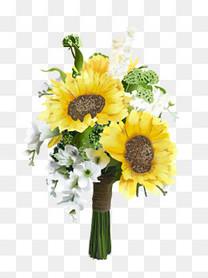 清新治愈手绘黄色向日葵花束