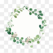 水彩花卉植物边框素材