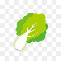 绿色蔬菜白菜