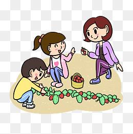 卡通春游全家采摘草莓png透明底图片