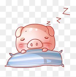 手绘小猪睡觉插画图片