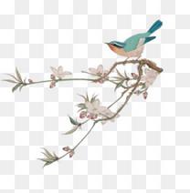 中国风典雅手绘树枝花鸟