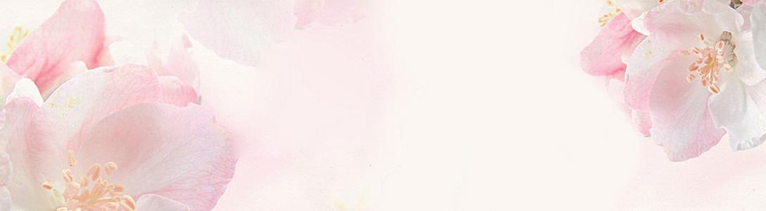 浪漫粉色花朵背景