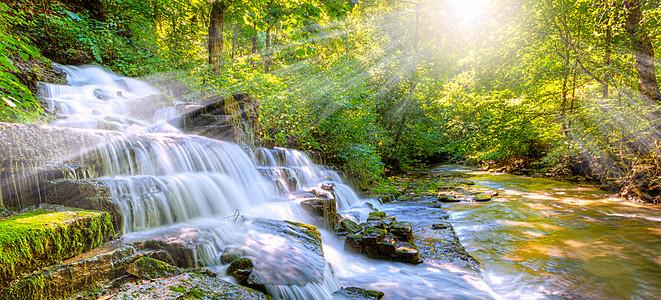 早晨森林中的美丽小溪瀑布海报背景