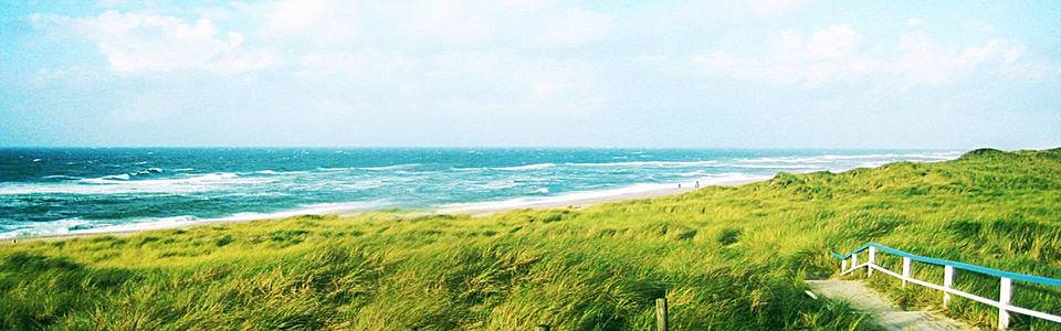 简约大气海边美丽景色海报背景