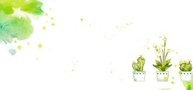 水彩图案与盆里的花卉背景