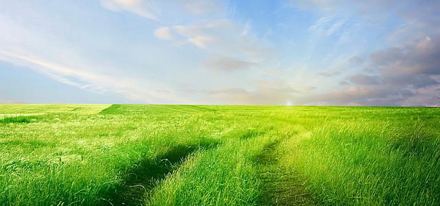蓝天白云草原背景