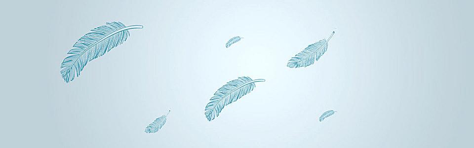 简约羽毛背景