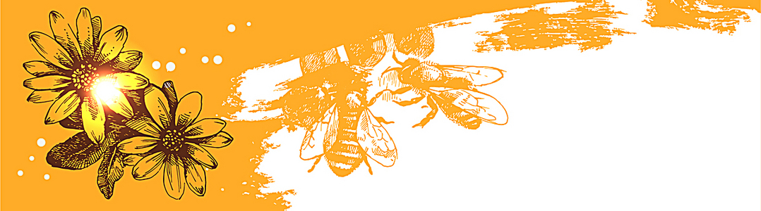精美蜂蜜元素banner背景