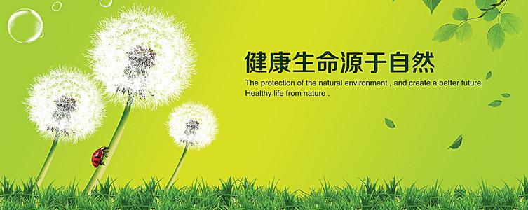 健康养生自然背景