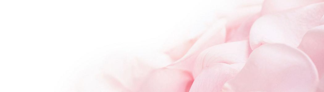 鲜花 植物 女性 粉色 桃花 花朵 梦幻 小鸟