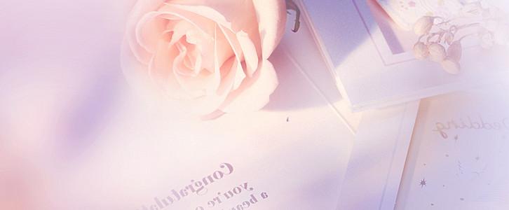 淡雅粉色背景