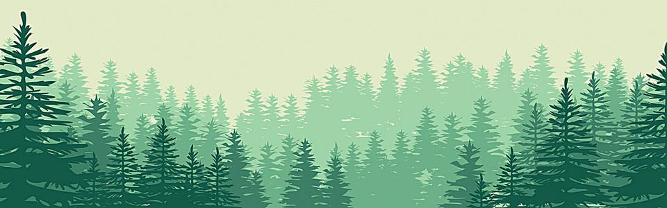 自然风森林树林背景 banner