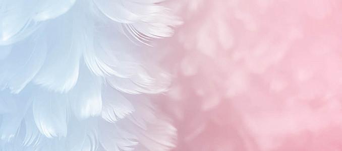 蓝色粉色羽毛梦幻纹理质感图