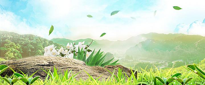 花草树木背景