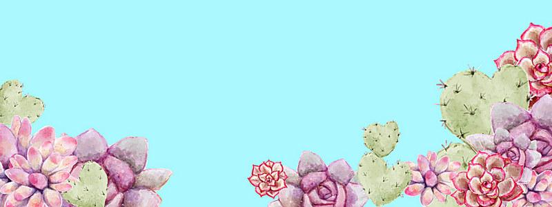 小清新文艺水彩手绘多肉植物蓝色背景