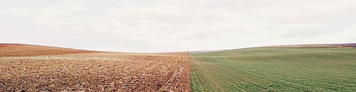 两种颜色的土地