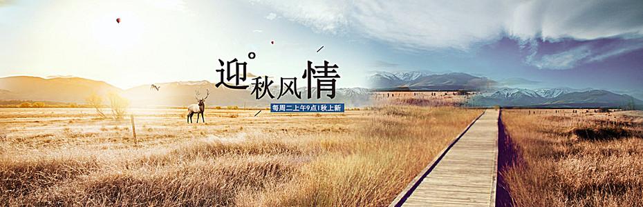淘宝  秋天女装 促销海报   海报banner背景