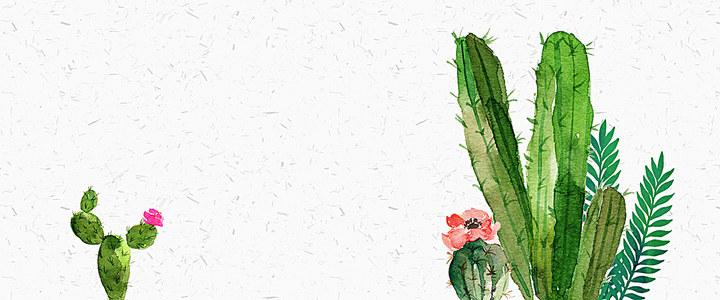 文艺清新水彩手绘仙人掌背景