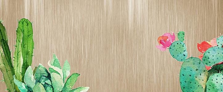水彩仙人掌木质背景