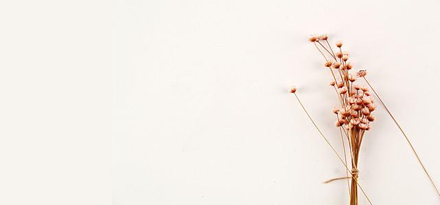 碎花背景图