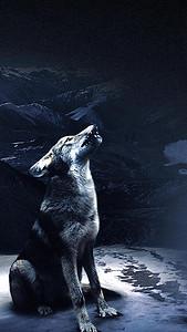 野狼H5背景