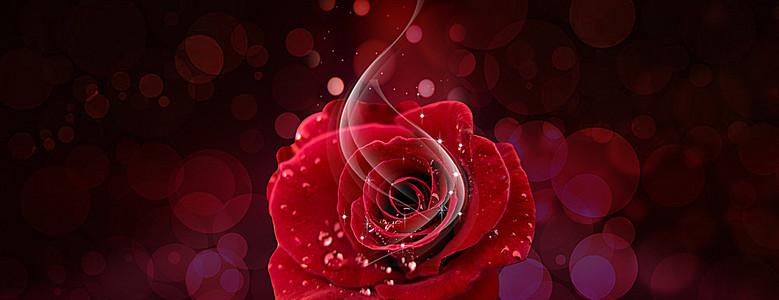 护肤化妆品红色玫瑰高贵大气背景