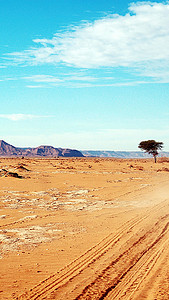 旅行非洲田园H5背景素材