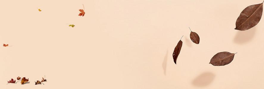 秋装 banner 女装