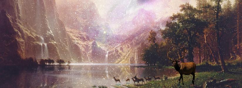 仲夏夜之星空奇幻森林