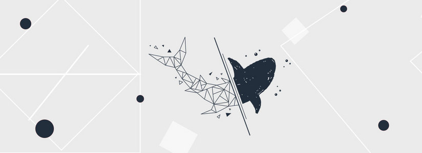 简约北欧ins风鲸鱼图形banner
