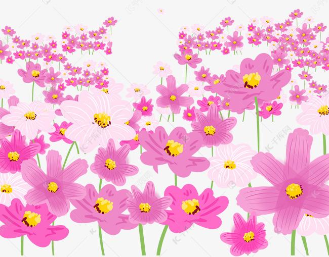 雏菊粉色花海素材图片免费下载