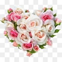 粉色玫瑰束