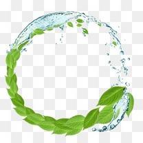 创意圆形水花绿叶