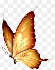 自然梦幻  卡通梦幻黄色蝴蝶
