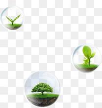 唯美精美漂浮环保树叶嫩芽植物树气泡