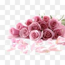 粉色浪漫玫瑰花束