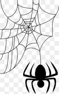 万圣节手绘蜘蛛网