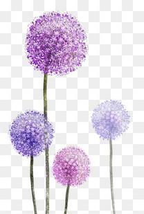 紫色花素材