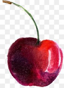 手绘水彩樱桃