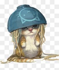 顶着碗的可爱猫