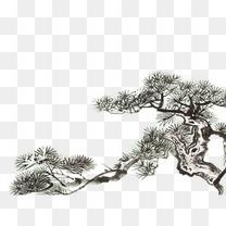 中国风 水墨画 松树