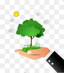 手心的树木