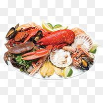海鲜实物吃的